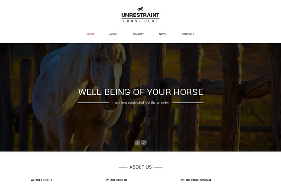 Unrestraint One Page Theme