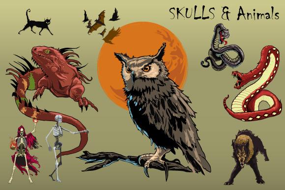 Skulls And Animals