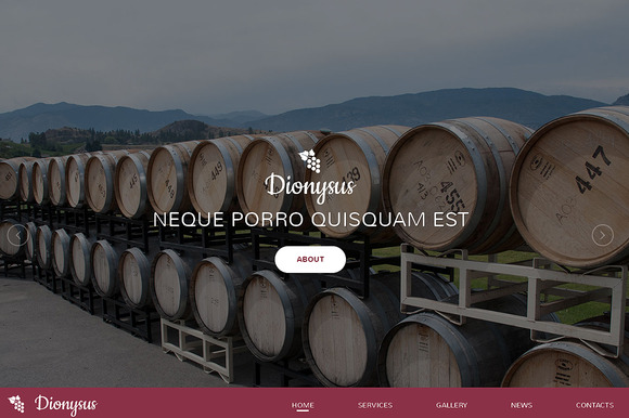 Dionysus Responsive One Page Theme