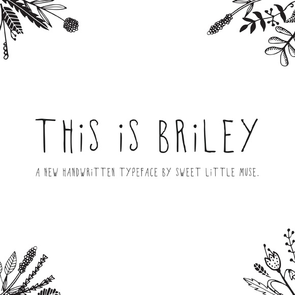 Briley Typeface