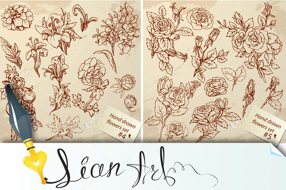 Set Of Vintage Graphic Flowers