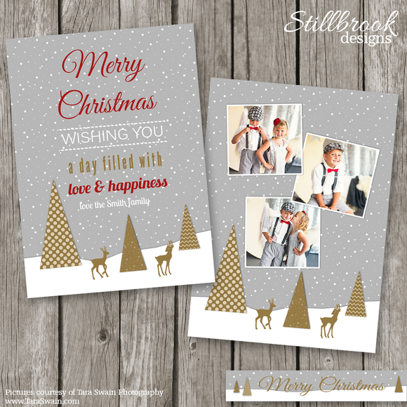 Christmas Card Template Photo Card