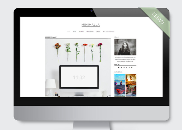 Minimalla Wordpress Template Blog