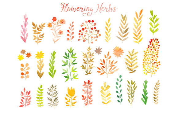Vector Watercolor Leaf Set