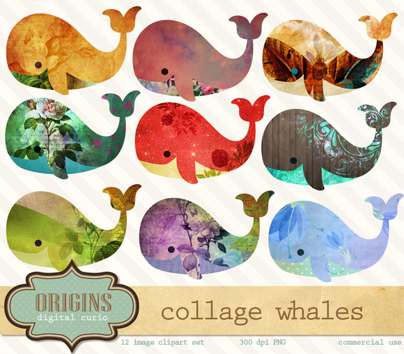Collage Whales