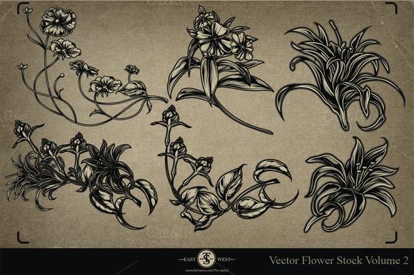 Vector Flower Stock Volume 2