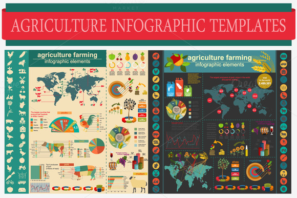 Agriculture Infographic Templates