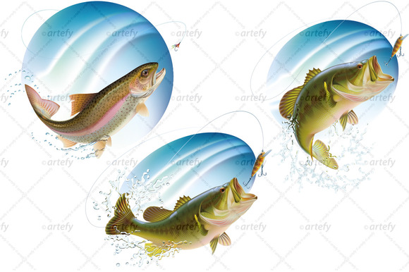 Jumping Fish In Water Spray