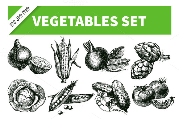 Hand Drawn Sketch Vegetables Set 1