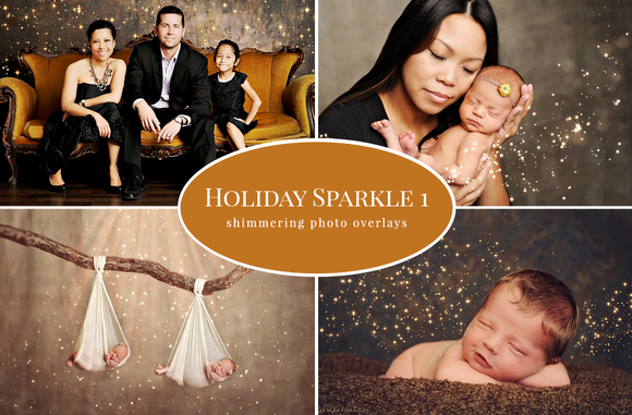Holiday Sparkle 1 Photo Overlays