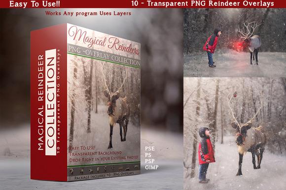 10 PNG Reindeer Overlays