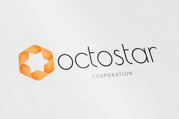 Vector Octogan Star Logo