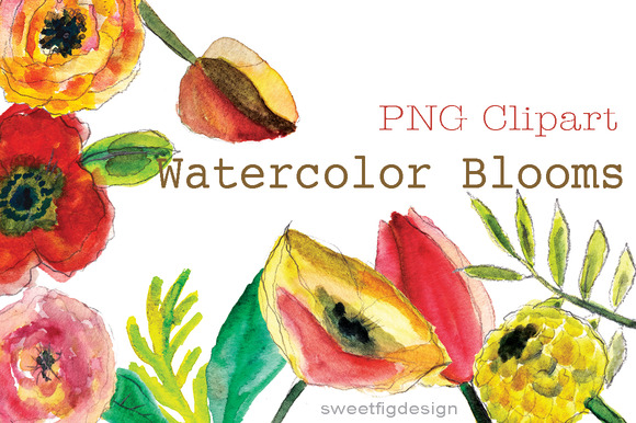 Watercolor Blooms