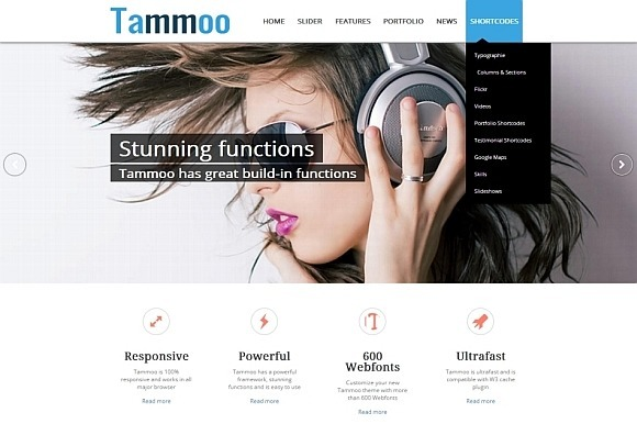 Tammoo Responsive WP Business