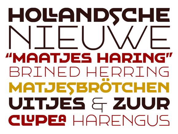 VLNL Hollandsche Nieuwe