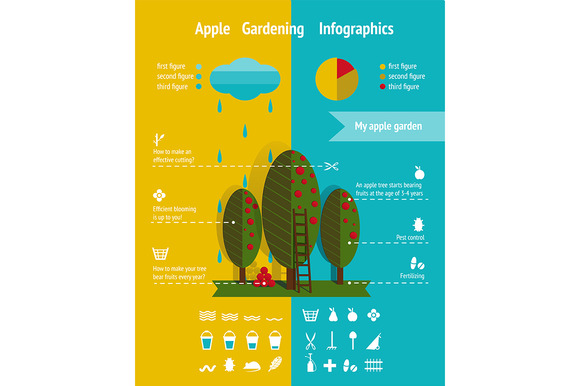 Apple Garden Infographics Elements