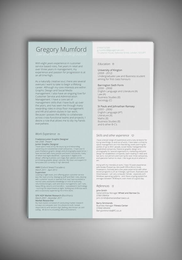 MINT CV Resume