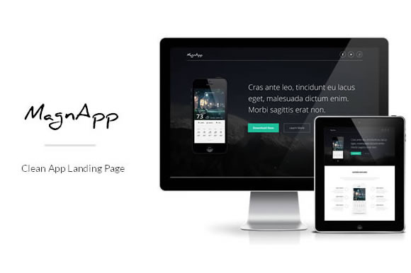 MagnApp App Landing Page Template