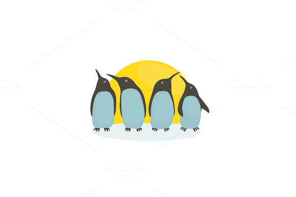 Penguins And Sun