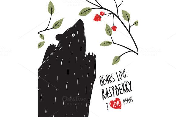 Wild Black Bear Loves Raspberry