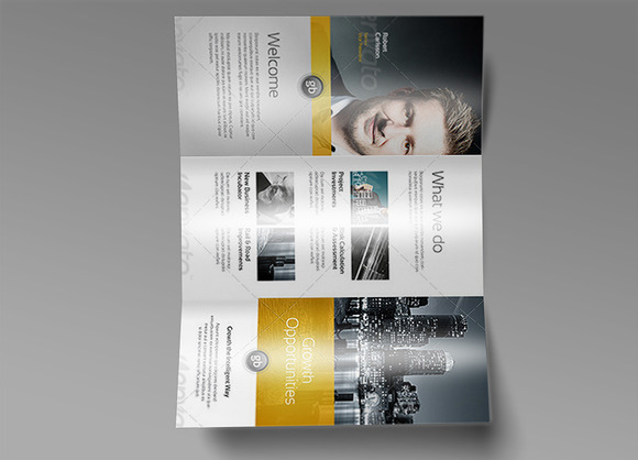 Tri Fold Brochure Mock-Up 7