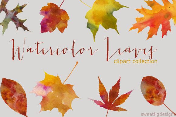 Watercolor Leaves Clipart Collection