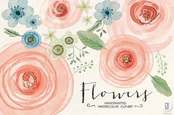Watercolor Flowers Ranunculus Rose