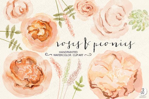 Watercolor Peonies Juliet Roses