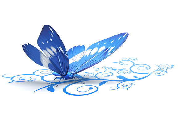 Butterfly On Ornate Background