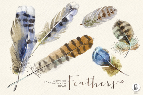 Watercolor Feathers Handpainted