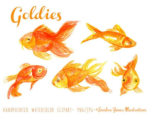 Watercolor Goldfish Illustration