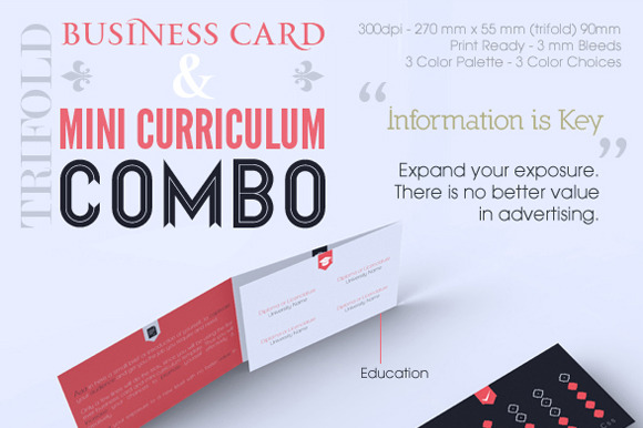 Trifold Business Card CV Combo