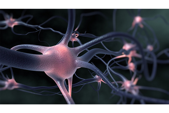 Excitation Of The Nervous System
