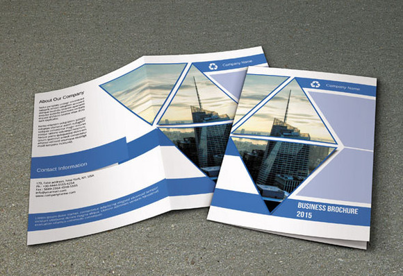 Business Brochure Bifold