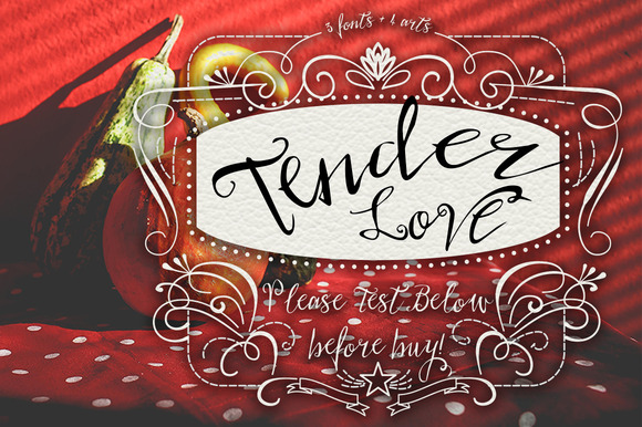 Tender Love Font 4 Arts CS3