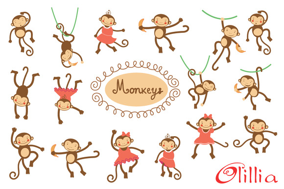 Cute Monkeys Collection