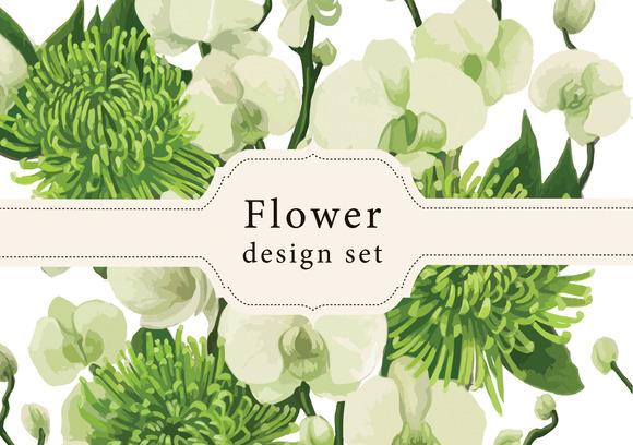 Dahlia Flowers Vector Design Set