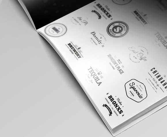 Flyer Logo Brochure Close-Up Mockup