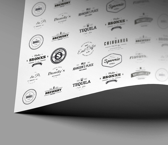 Flyer Logo Brochure Close-Up Mockup