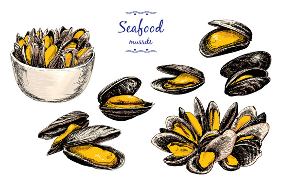Mussels Set Of Graphic Illustration