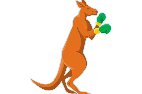 Kangaroo Boxer Boxing Retro