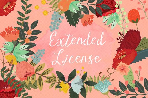 Extended License