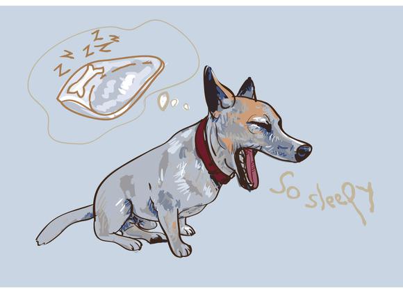 Adorable Yawning Dog