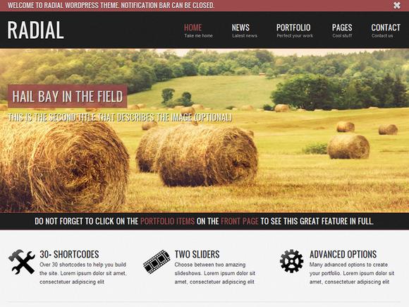 Radial Blog Wordpress Theme