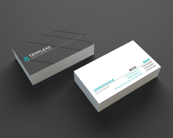 Minimal Business Card SE0209