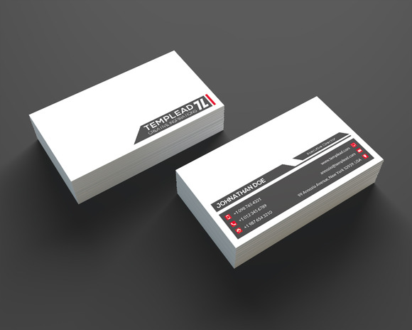 Minimal Business Card SE0211