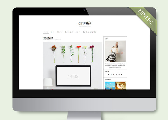 Camille Wordpress Template Blog