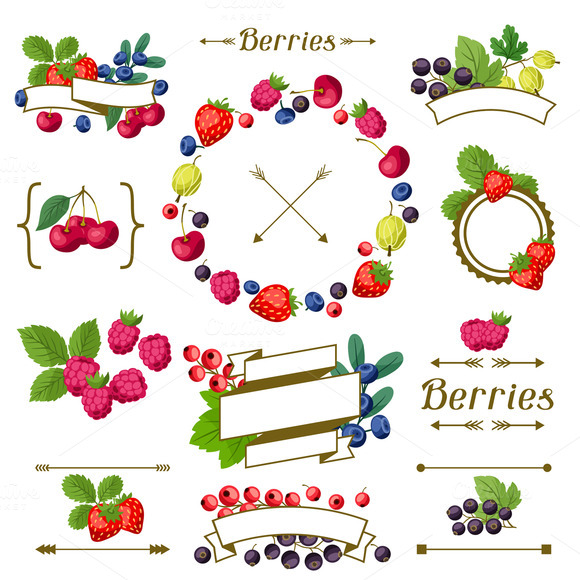 Set Of Labels With Berries