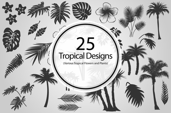 25 Tropical Designs