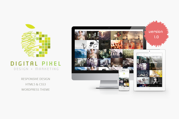 Digital Pixel Responsive Theme